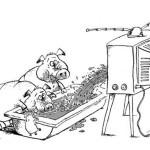 Славянск. Взгляд изнутри. Записки мирного человека. Часть 10. Горькие уроки Донбасса
