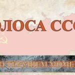 Голоса СССР. О текущем моменте