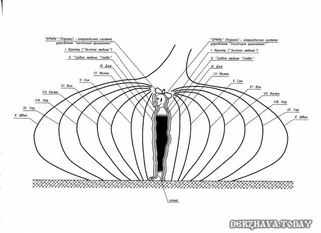 Энергетические тела человека по Спасу