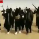 Почему все российские СМИ рекламируют ИГИЛ?