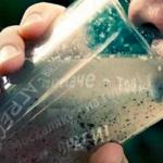 Украина: Психотропное химическое оружие — технологии массового зомбирования ЦРУ в действии