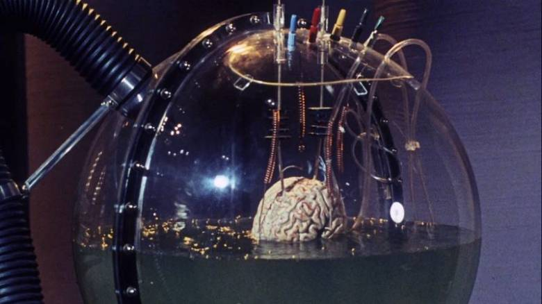 мозг-в-чане