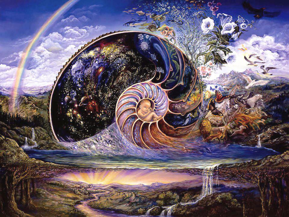 вселенная внутри