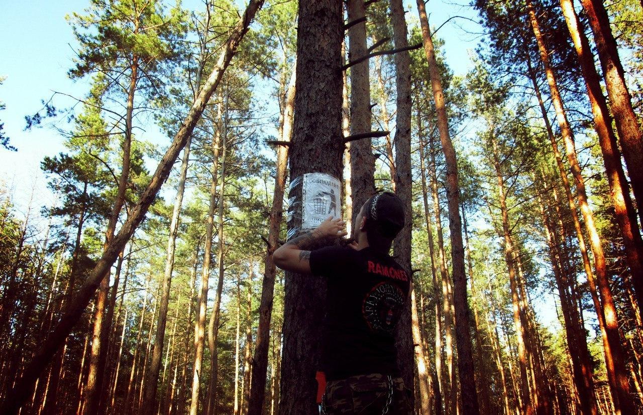 Чистота в лесу